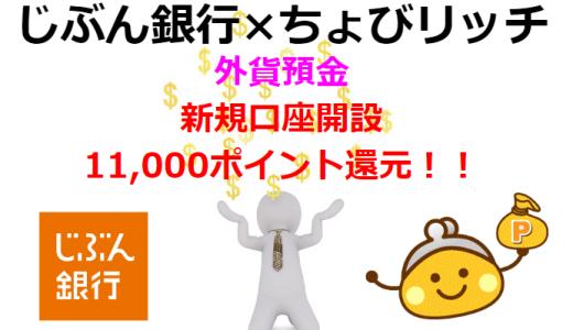 低金利の今、注目される外貨預金を始めるなら「じぶん銀行×ちょびリッチ」で11,000ポイント還元がお得!!