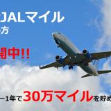 1年間で30万マイル!?陸マイラーで大量JALマイルを貯める方法を教えます!