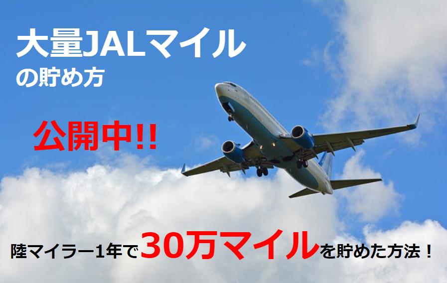 大量JALマイルはどう貯める? 陸マイラー1年で30万マイル貯めた方法を公開中!!
