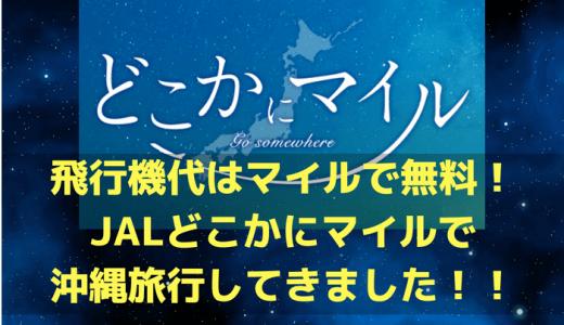 【国内旅行のお得技】飛行機代はマイルで無料!JAL「どこかにマイル」で沖縄に行ってきた!!
