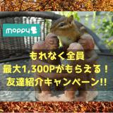 モッピー新規登録でもれなく最大1,300ポイントもらえる!友達紹介キャンペーン実施中!!