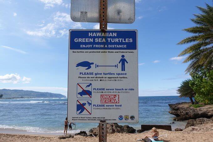 ハレイワ・アリイ・ビーチ・パークのウミガメの注意看板